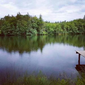 Steg am Stettner See